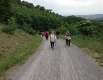 Nordic Walking Tour Brno Klajdovka 2015_31 | NW Tour 2015