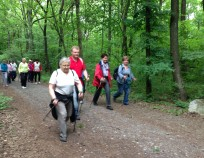 Nordic Walking Tour Brno Klajdovka 2015_34 | NW Tour 2015